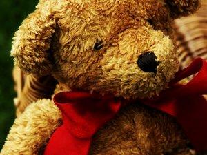 teddybearbywithnootherway.jpg