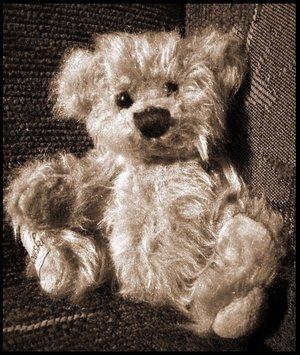 teddybyschelly.jpg